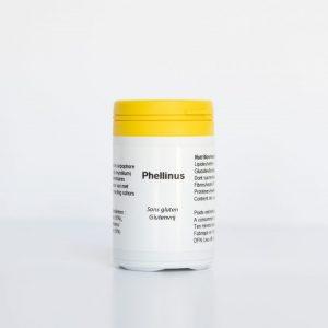 Phellinus