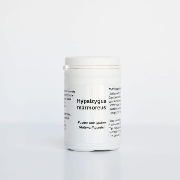 Hypsizygus marmoreus