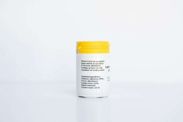 Laetiporus CHM